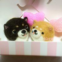 バレンタインデー用のボックスinチョコ色柴犬ちゃん