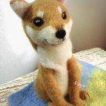 オーダーの柴犬は、穏やかな表情が印象的です。