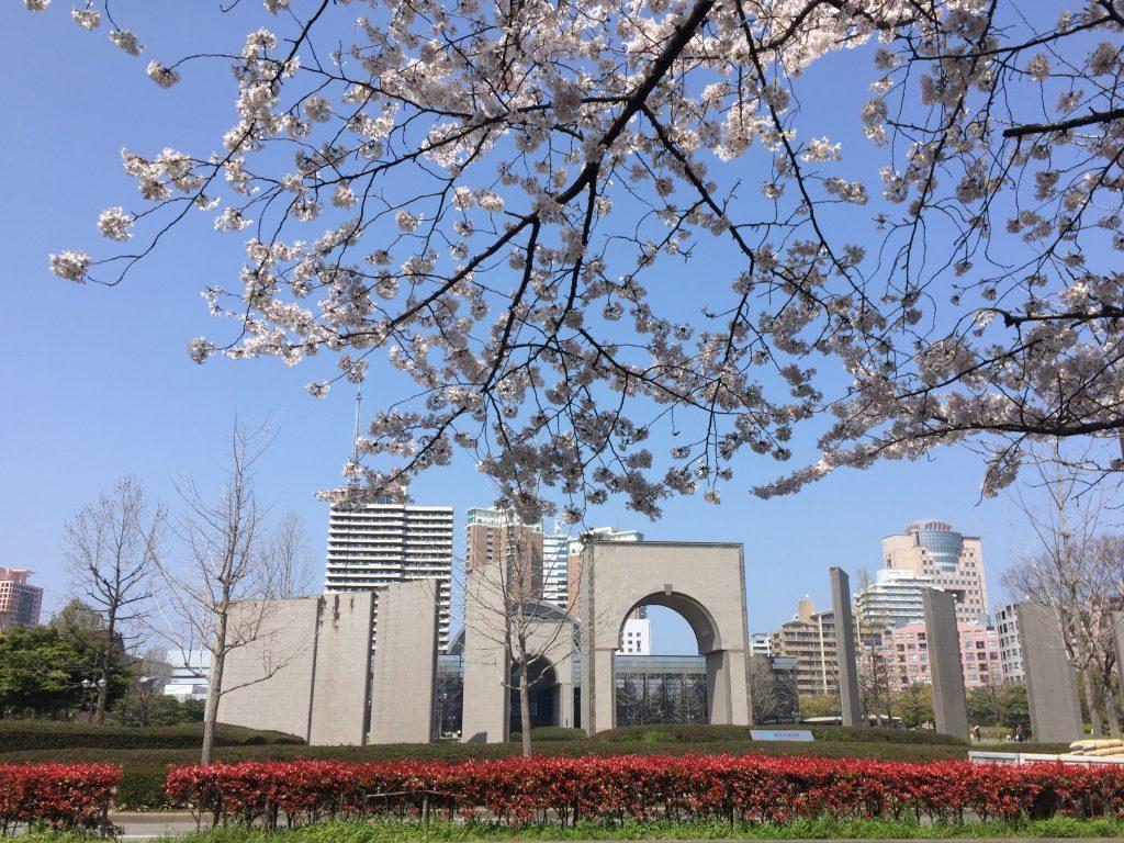 福岡市博物館と桜