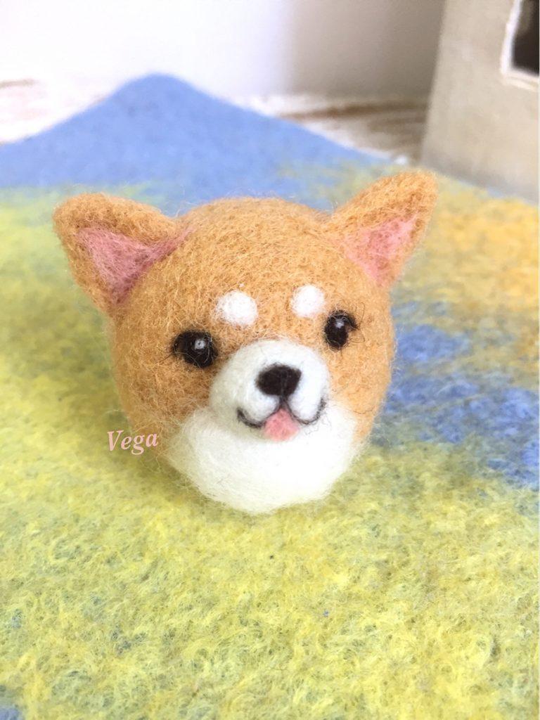 ミルクキャラメル色の柴犬ちゃん
