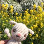 福岡市動植物園でお花見パート2は、癒やしの時間を過ごしたお話。