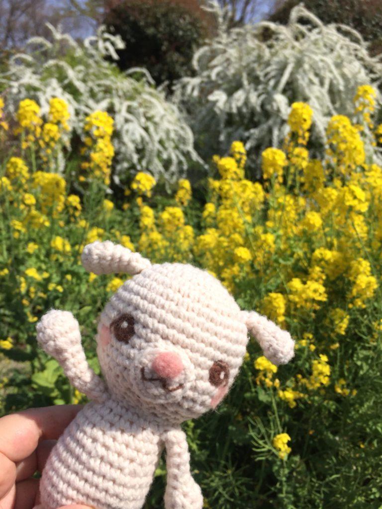 編みぐるみちゃんと菜の花