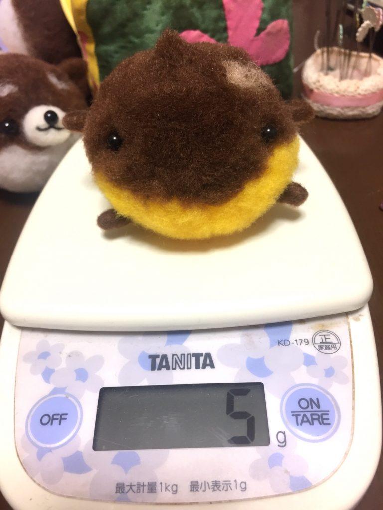 体重(笑)5グラムのくりン