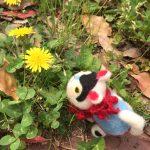 張り子犬さんと、福岡の街をお散歩しました。花と緑で、もう初夏のよう。