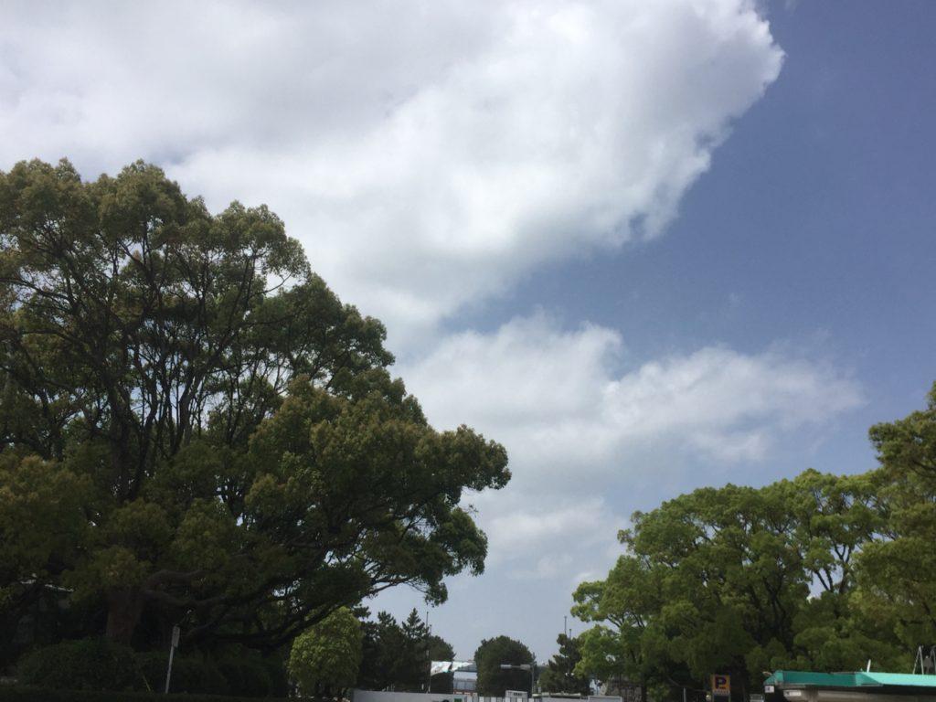 筥崎宮の景色