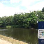 初夏の福岡城跡散歩に行ってきました。