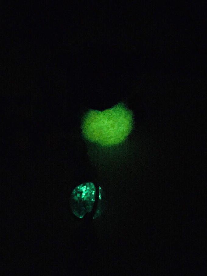 緑色に光る「ぼんてん」