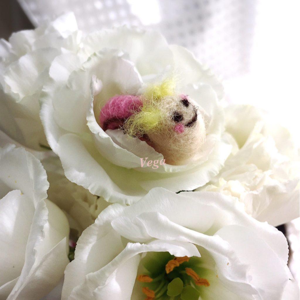 お花の中でニコニコの、カタツムリちゃん