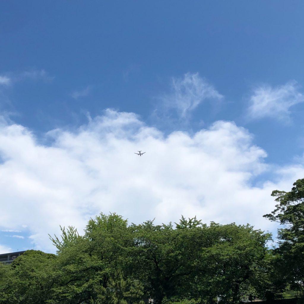 お堀から見えた飛行機